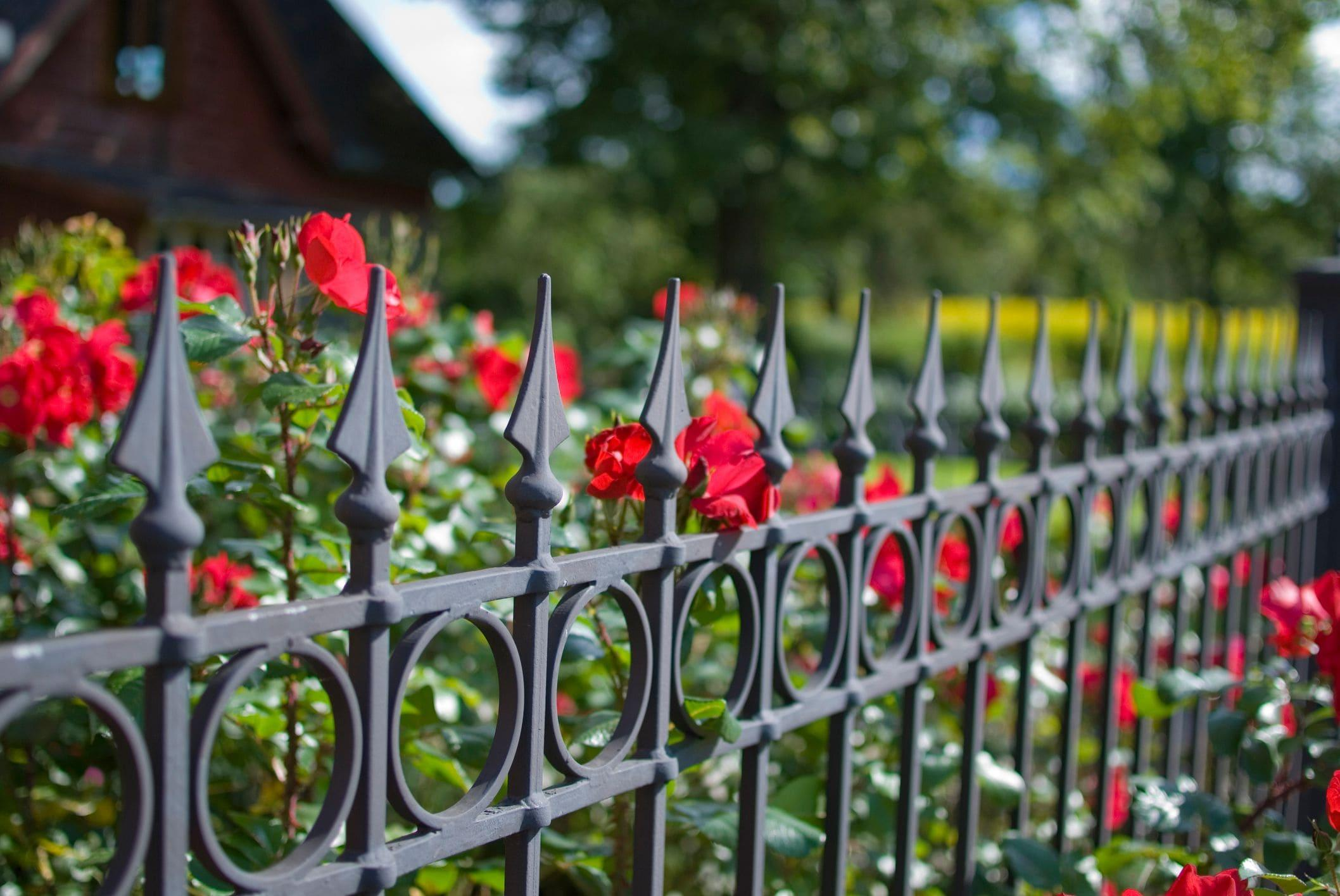 iron gate fencing with flowers