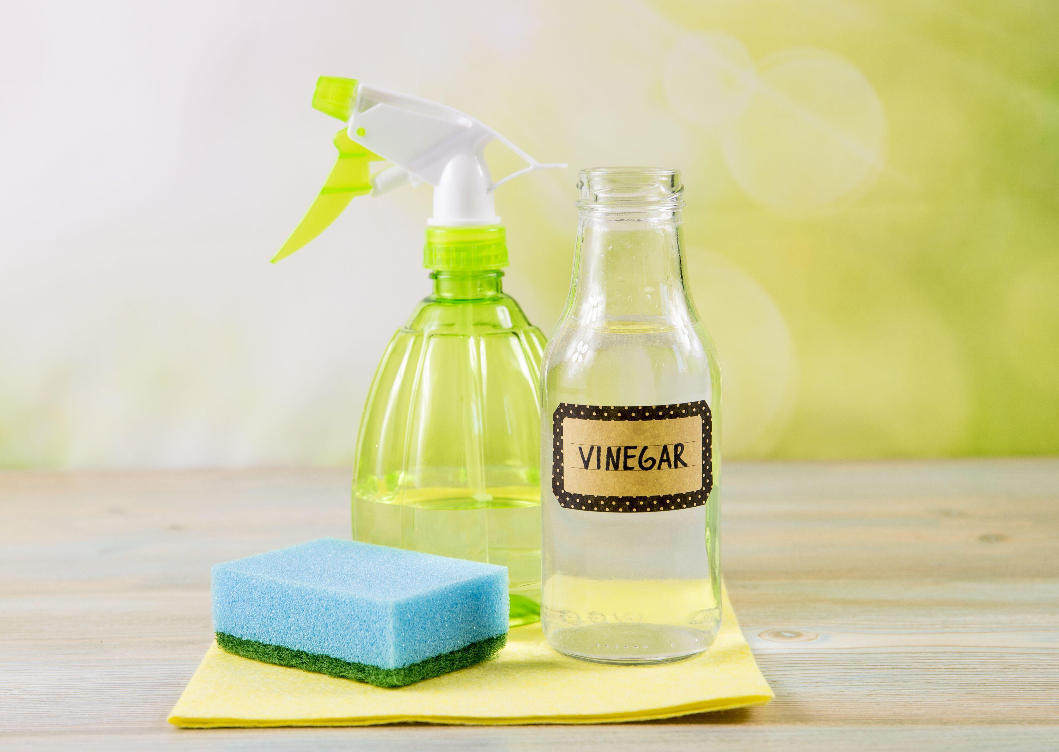 natural-cleaning-supplies.jpeg?mtime=20200220123420#asset:16532
