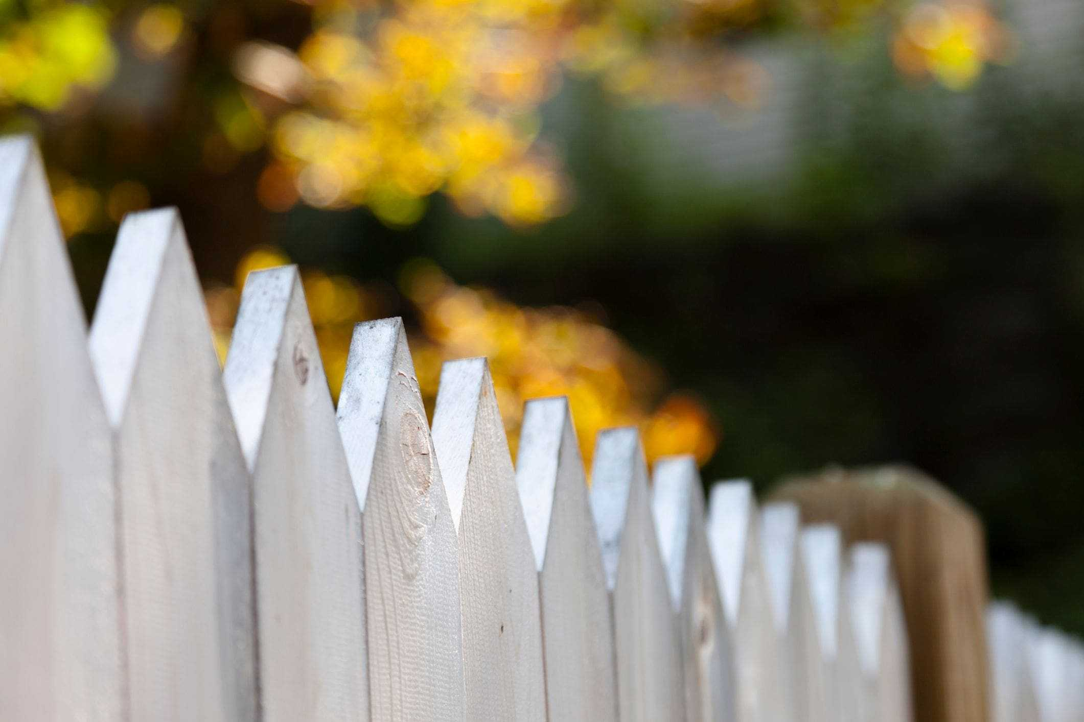 rustic white fence